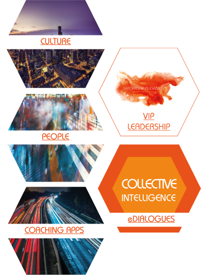 Emergence of Collective Intelligence: Culture, People, VIP Leadership, Coaching App, eDialogues