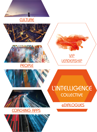 Emergence de l'intelligence collective : Culture, People, VIP Leadership, Coaching App, eDialogues